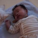 赤ちゃんが泣き出すと、おやつを持ってきて泣き止ませようとするチワワ