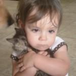 わが子のように子猫を抱く、子供が愛らしすぎる