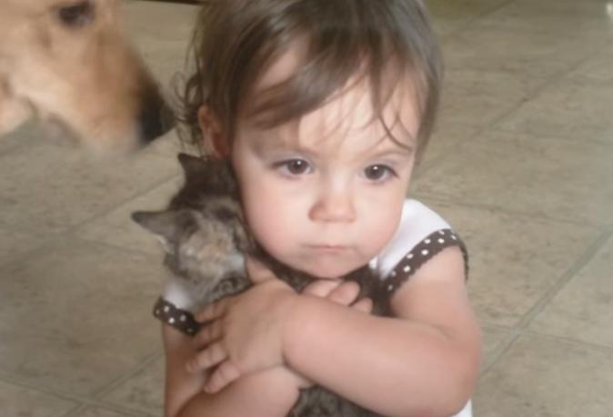ワンちゃんが現れると守るように子猫を抱く、子供が愛らしい(^◇^)