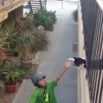 自転車に乗る子供と「いってらっしゃ~い」のハイタッチする猫