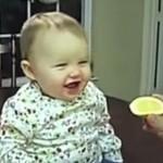 「初めて!?」  すっぱいレモンを食べた時の赤ちゃんのリアクション!
