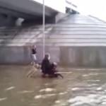 洪水の中、車イスを押す犬