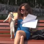美人のお姉さんに猛アタックする猫