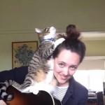 ギターの上に乗っていつも邪魔する猫ちゃん