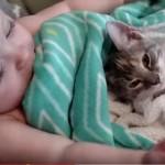 赤ちゃんと同時に目覚める猫ちゃん♪