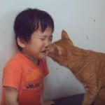 「泣いちゃダメニャン」子供を泣き止ませる、優しい猫ちゃんにほっこり