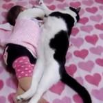 赤ちゃんと寝る猫さんとワンちゃんたちに癒される
