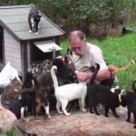 たくさんの保護した猫達と暮らすおじいさんの牧場が楽園のようだった♪