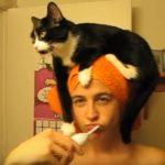 お姉さんの歯磨き中はいつも頭にのる猫さん