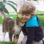 仲良しすぎる子供と猫ちゃん、お互いの純粋な愛情に感動