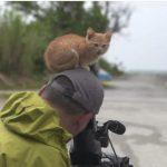 猫の撮影をしていたら、猫が頭の上にやってきた♡
