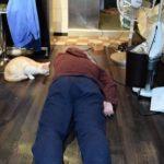 飼い猫の前で死んだふりをしてみたら・・・
