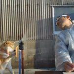 柴犬マリちゃんと飼い主のコント「浪人させない犬」