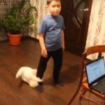 揺れている子供の後ろから、我慢できなくなって突撃する猫さん