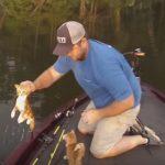 川釣りをしていたら、前から子猫が泳いでやってきた!?