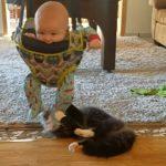 くるくる回って遊ぶ赤ちゃんと、下からちょっかいを出す猫ちゃん