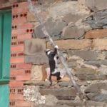 屋根から降りれない子ネコ、勇気をふり絞ってアクロバティックにおりる