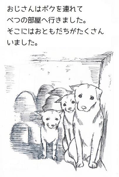 15D891DA-6E2E-11E4-813F-8237CD288735_l