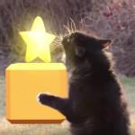 黒猫ちゃんが目覚めたら、スーパーマリオの世界に!?