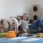 [10点] 驚いた拍子にムーンサルト(月面宙返り)をキメる子猫さん