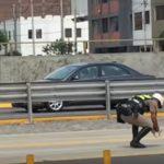 道路の真ん中に迷い込んだ子ネコちゃんを助ける警察官が男前