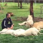 ライオンと遊ぶ男を後ろから猛獣が突進・・・助けたのは・・・?