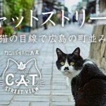 「ニャオ~ン」猫の目線による「キャットストリートビュー」第二弾がスタート