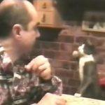 ご飯が食べたい事を伝えるために手話を使う猫がカワイイ♡