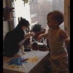 「エイッ!エイッ!」パンチの応酬で遊ぶ、猫ちゃんと子供
