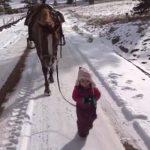 小さな女の子とお散歩、優しくゆっくり歩くお馬さん